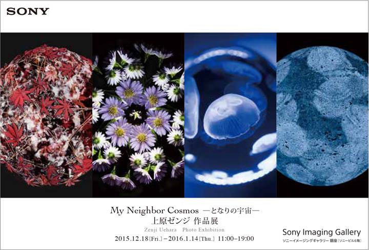 3rd_上原ゼンジ_postcard
