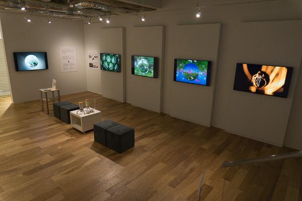 今回の展示はすべて4Kの液晶テレビ「BRAVIA」を使用しています。透過光での撮影なども色鮮やかに再現されています。